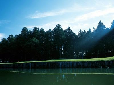 ワンウェイゴルフクラブ画像5