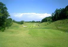 セントラルゴルフクラブ NEWコース画像2