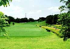 アローエース ゴルフクラブ1