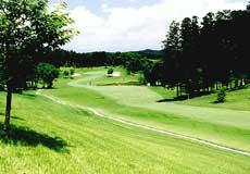 アローエース ゴルフクラブ画像2