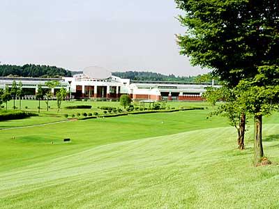 アローエース ゴルフクラブ画像3