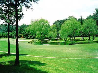 アローエース ゴルフクラブ画像4