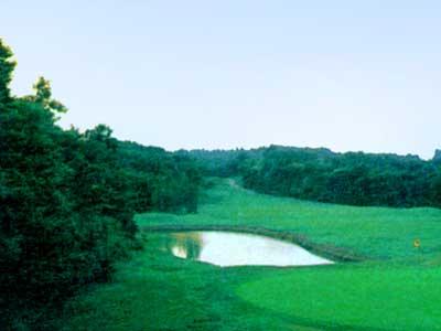 スーパーゴルフカントリー倶楽部 益子コース画像4