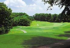 ファイブエイトゴルフクラブの画像3