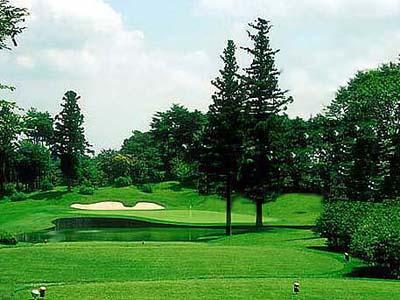 ファイブエイトゴルフクラブ画像5