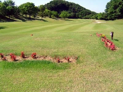 アイランドゴルフリゾート那須(那須グリーンCC)画像2