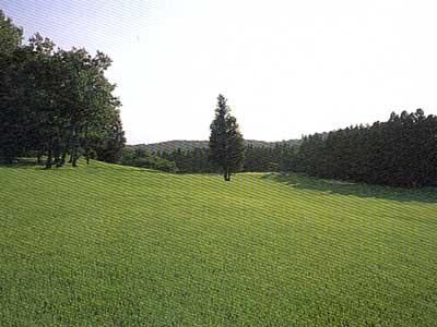 那須黒羽ゴルフクラブ画像5