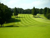 ニューセントラルゴルフ倶楽部画像2