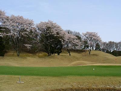 ニューセントラルゴルフ倶楽部画像4