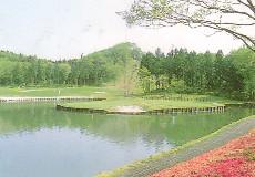 ピートダイゴルフクラブ VIPコースの画像2