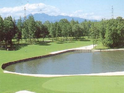 ピートダイゴルフクラブ VIPコースの画像3