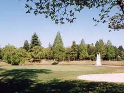 宮の森カントリー倶楽部の画像3