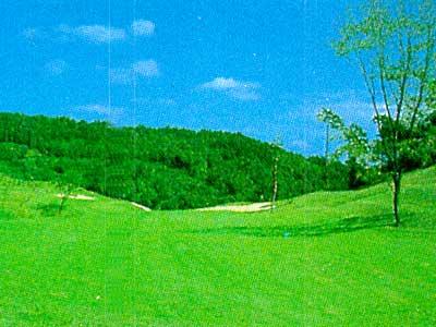 アロハカントリークラブホテル&リゾート烏山コース(旧:リレントCC)画像3
