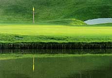 パインツリーゴルフクラブ